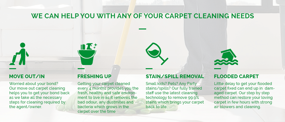carpet-cleaning-process-1 Home