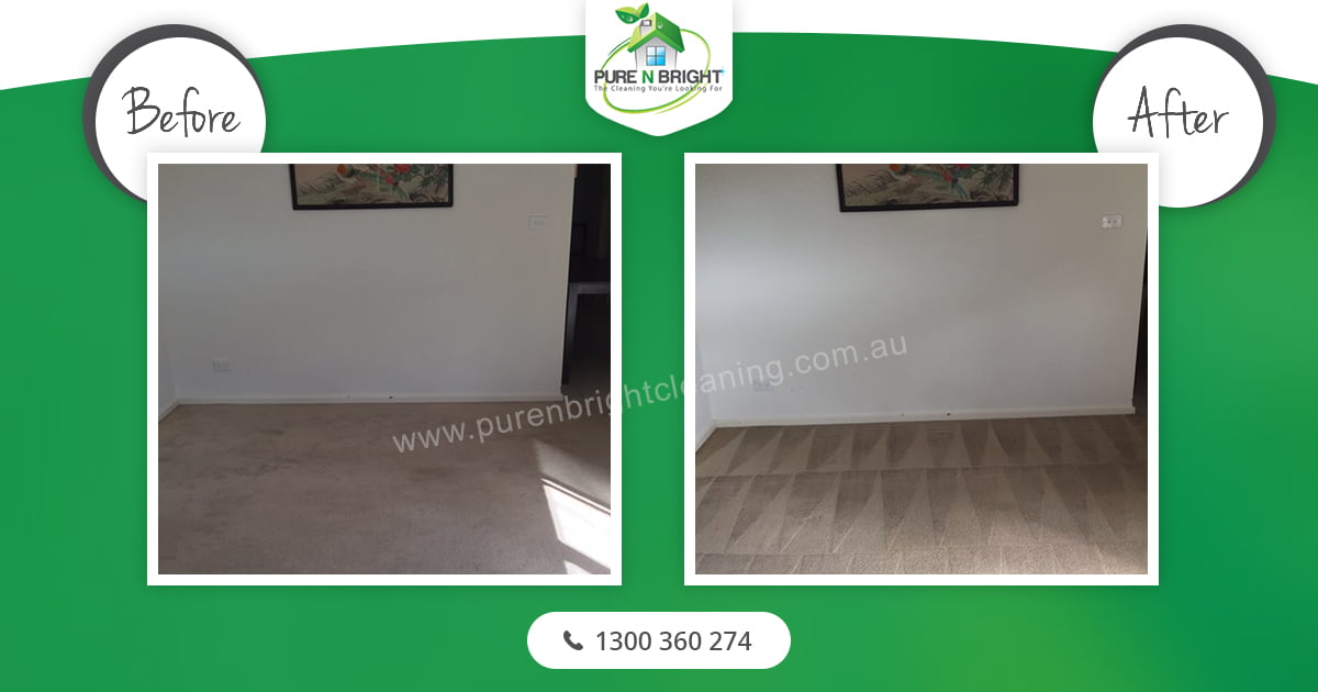 1.Carpet-Cleaning Carpet Cleaning Pakenham