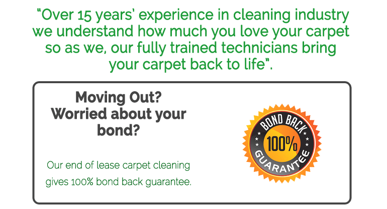 15years-exp Carpet Cleaning