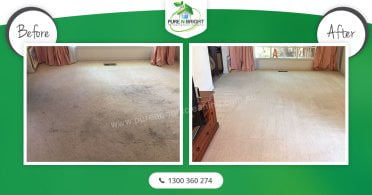 Carpet-Cleaning-Melbourne-1 Carpet Cleaning