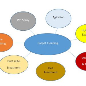 carpet-cleaning-preocess-300x300 carpet cleaning preocess