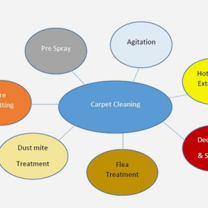 carpet-cleaning-preocess2-300x300 carpet cleaning preocess
