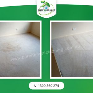 carpet-cleaning-lynbrook-300x300 carpet-cleaning-lynbrook