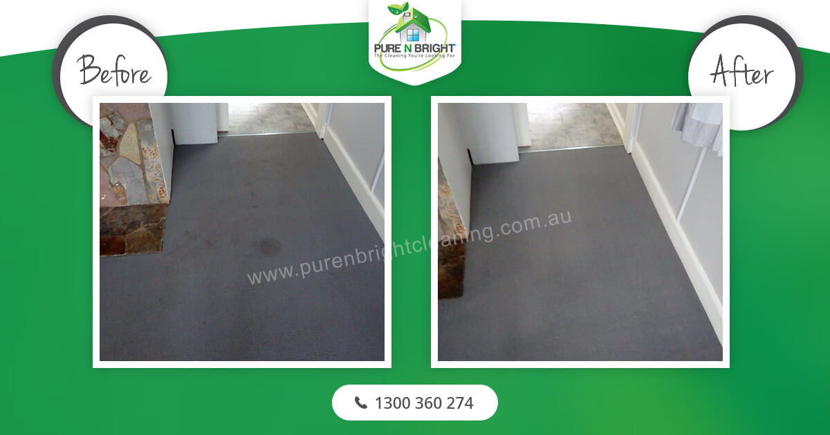 Carpet-Cleaning-Melbourne-1 Carpet Cleaning Gallery Album