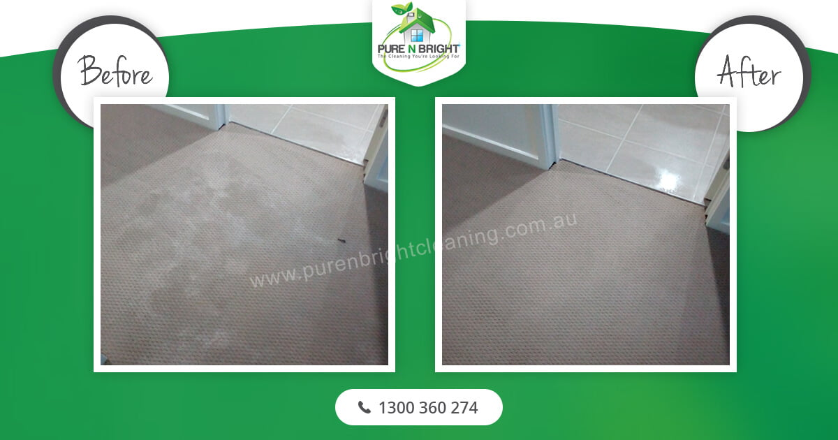 Carpet-Floor-Cleaning Carpet Cleaning Gallery Album