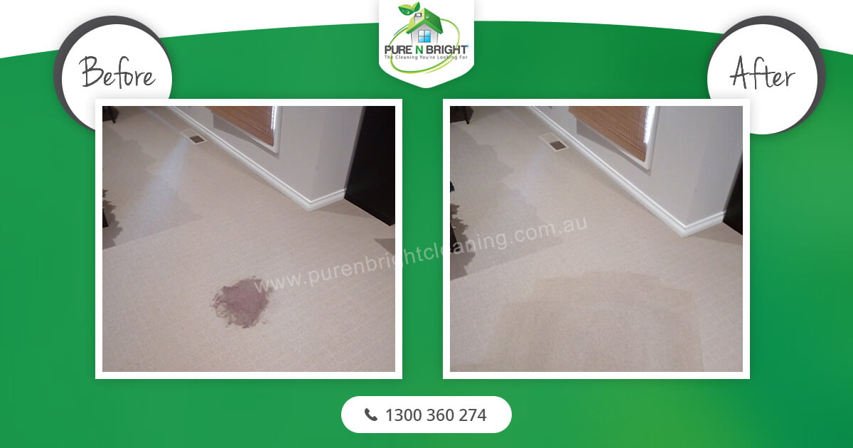 Carpet Cleaning Gallery Album