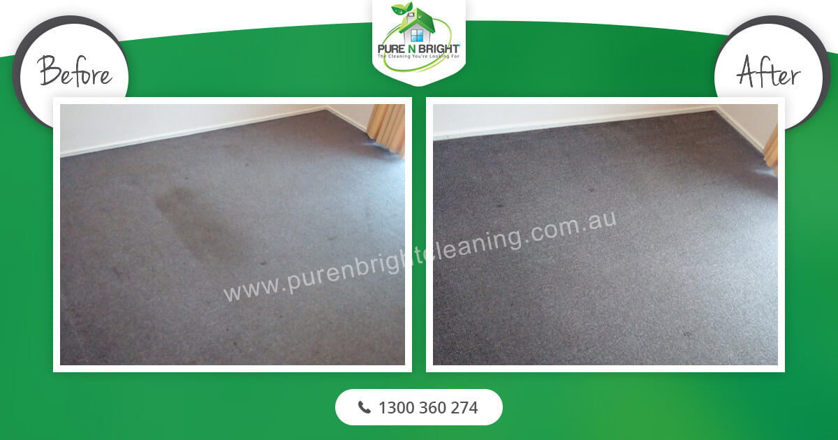 Melbourne-Carpet-Cleaning-2 Carpet Cleaning Gallery Album