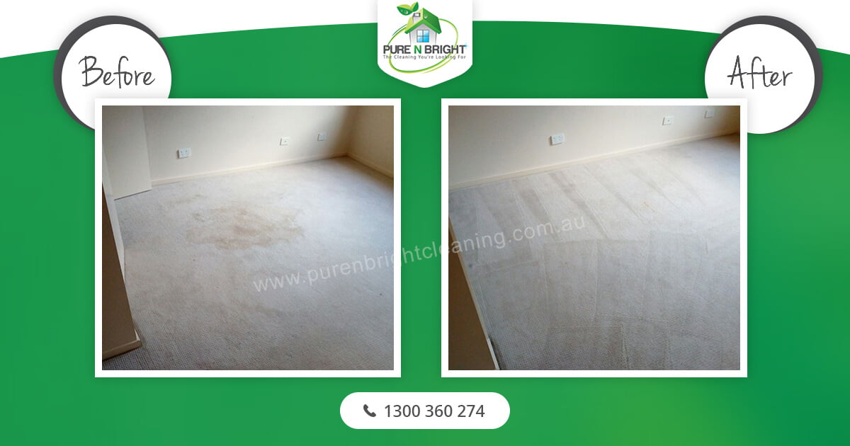 bedroom-carpet-cleaning Carpet Cleaning Gallery Album