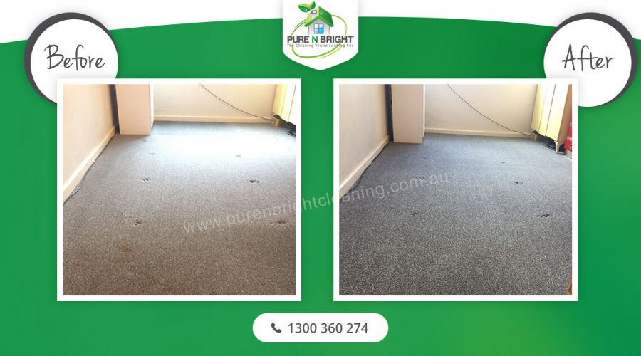 Gray Carpet Cleaning