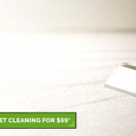 Blog 2 carpet cleaning