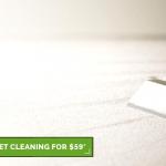 Blog 2 carpet cleaning