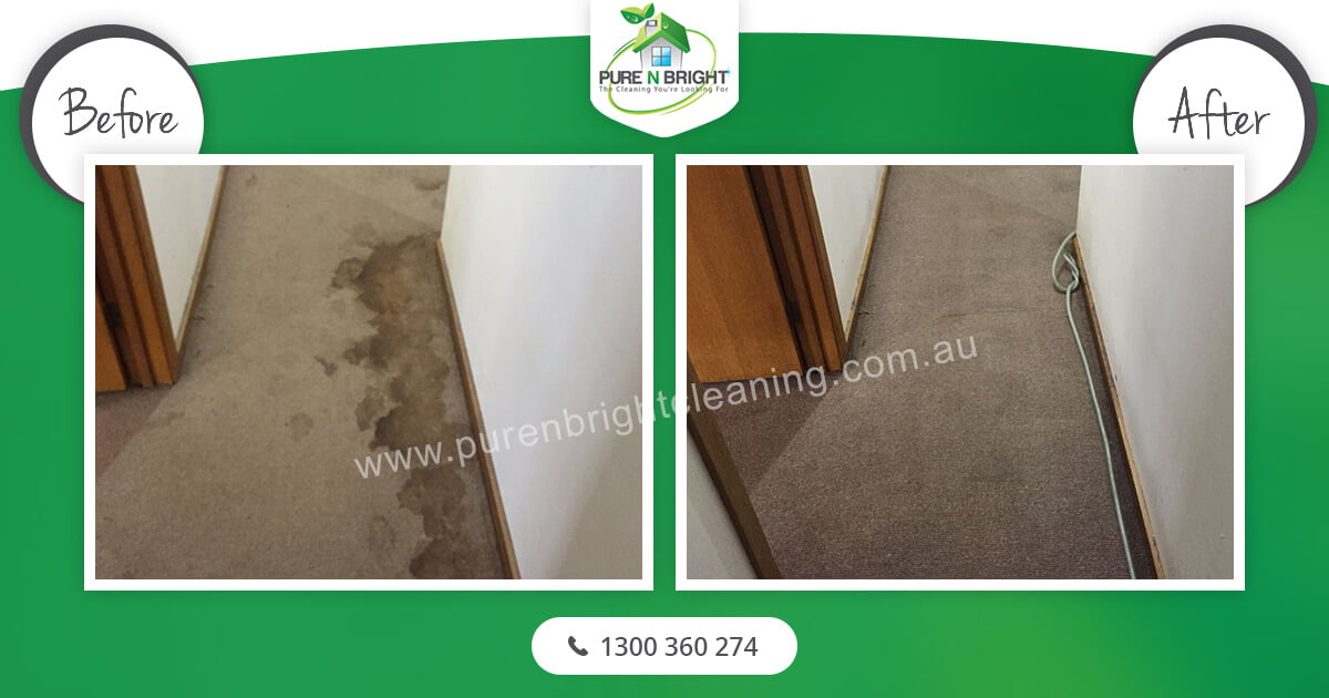 Carpet-Cleaning-Melbourne Carpet Cleaning Gallery Album