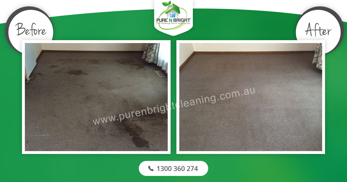 Carpet-Cleaning Carpet Cleaning Gallery Album