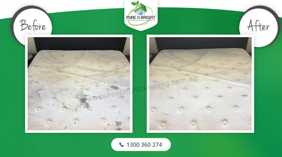 before-after-mattress-cleaning