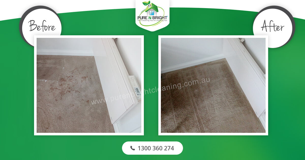 room-cleaning Carpet Cleaning Gallery Album