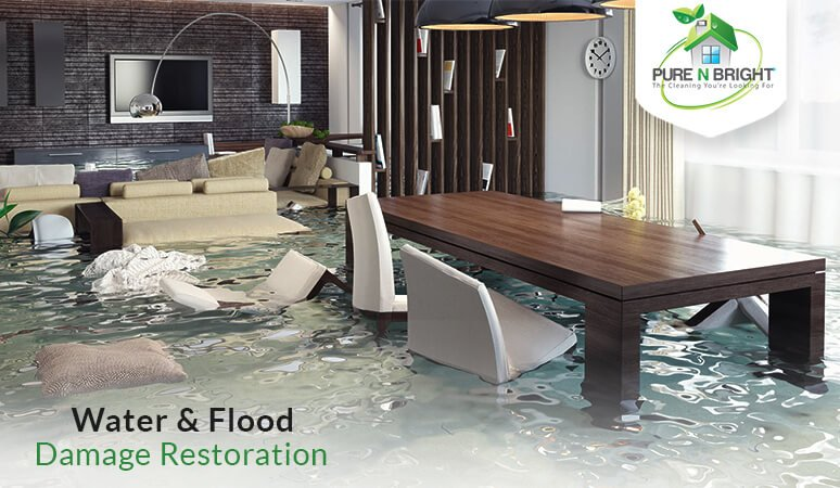 Banner-Image02-March-Pure-N-Bright Water & Flood Damage Restoration