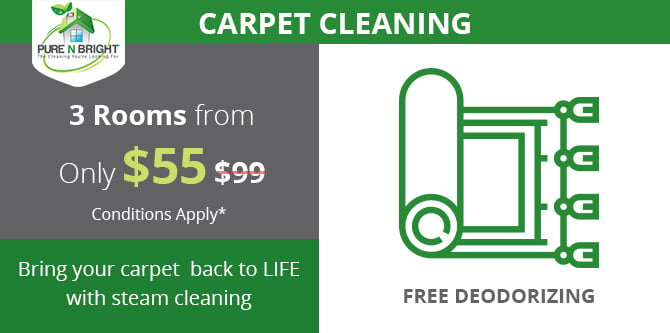 PureNBright-Nov-Carpet-Cleaning-Special-Offer Specials Deals