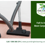 Fall-Is-in-the-Air-Best-Carpet-Cleaning-Tips-Are-Here