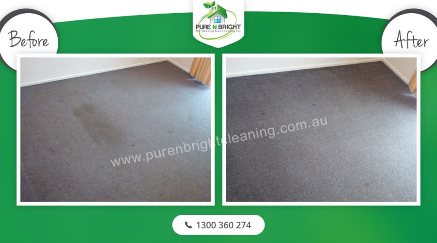 Melbourne-Carpet-Cleaning-2