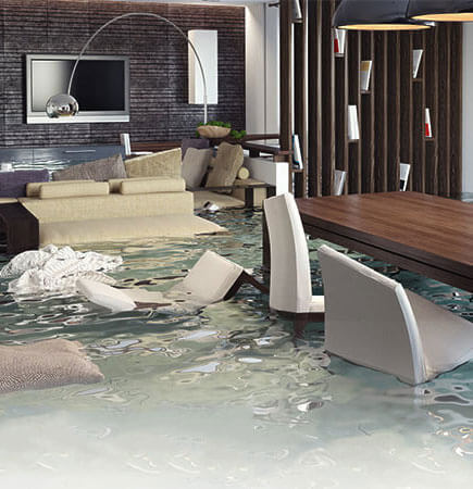 flood-carpet